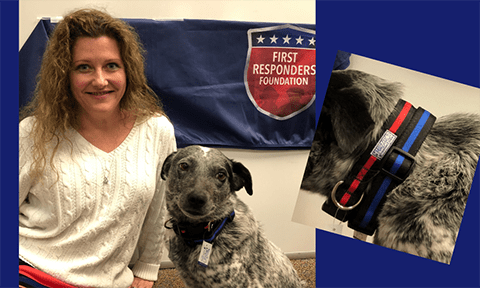 Support Red|Blue Pet Collars